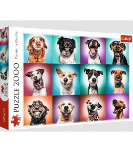 FOLIA MALARSKA GRUBA CZARNA 4*5M 450G